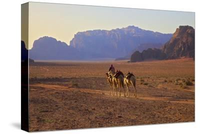 Bedouin with Camels, Wadi Rum, Jordan, Middle East