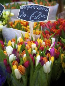 Flower Market, Amsterdam, Netherlands by Neil Farrin