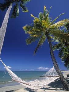 Hammock on Beach, Danarau, Viti Levu, Fiji by Neil Farrin