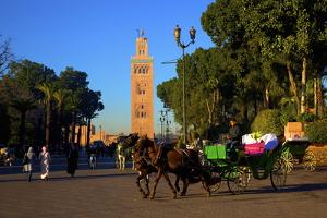 Koutoubia Mosque, UNESCO World Heritage Site, Marrakech, Morocco, North Africa, Africa by Neil Farrin
