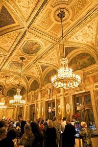Vienna State Opera House, Vienna, Austria, Europe by Neil Farrin