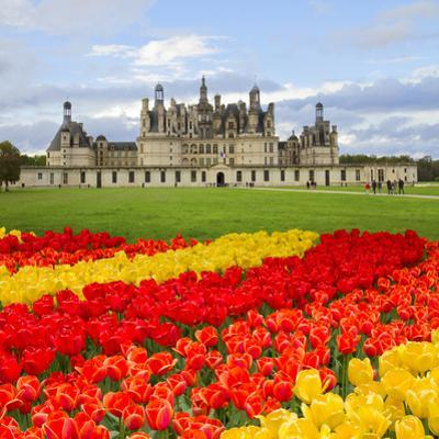 Chambord Castle, Loire Valley,F Rance