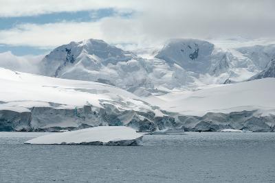 Neko Harbor, Andvord Bay, Antarctic Peninsula-dani3315-Photographic Print