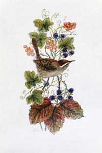 Wren on a Spray of Berries by Nell Hill