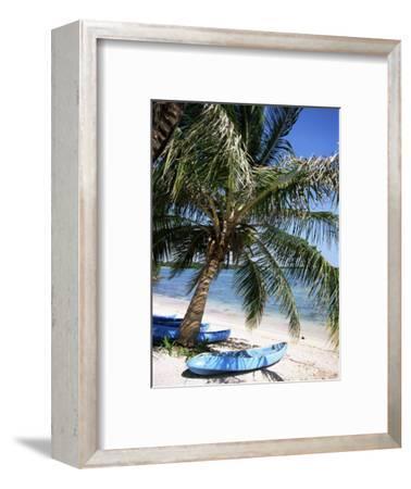 Beach with Palm Tree and Kayak, Punta Soliman, Mayan Riviera, Yucatan Peninsula, Mexico