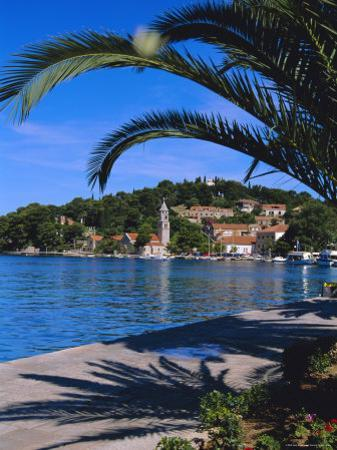 Promenade and Harbour, Cavtat, Croatia, Europe by Nelly Boyd