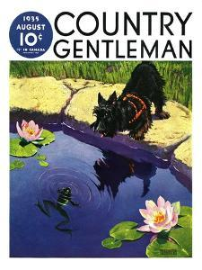 """""""Scottie and Frog,"""" Country Gentleman Cover, August 1, 1935 by Nelson Grofe"""