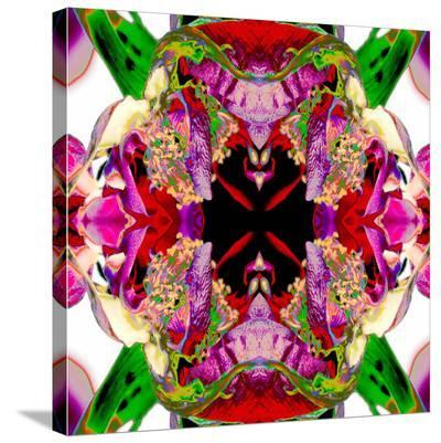 Neon Rose redux-Rose Anne Colavito-Stretched Canvas Print