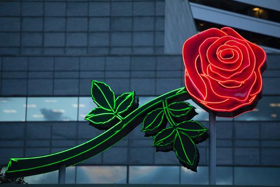 Neon rose, Waterfront Park, Portland, Oregon, USA-Panoramic Images-Photographic Print