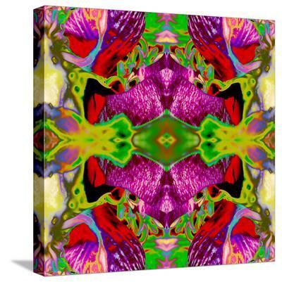 Neon Rose2-Rose Anne Colavito-Stretched Canvas Print