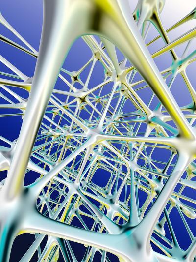 Nerve Cells-PASIEKA-Photographic Print