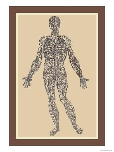 Nervous System-Andreas Vesalius-Art Print