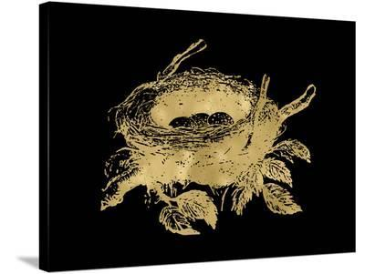 Nest Golden Black-Amy Brinkman-Stretched Canvas Print