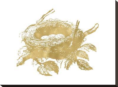 Nest Golden White-Amy Brinkman-Stretched Canvas Print