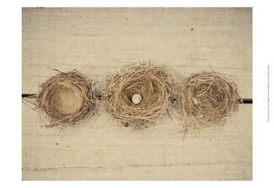 Nesting II-Meghan McSweeney-Art Print