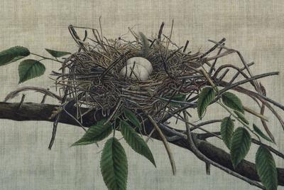 Nesting III-John Butler-Art Print