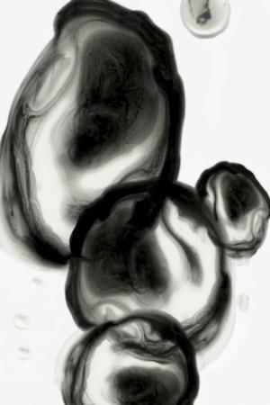 https://imgc.artprintimages.com/img/print/neutral-blobs-i_u-l-q1buydi0.jpg?p=0