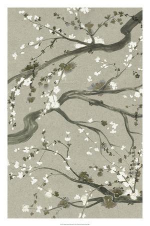 Neutral Cherry Blossoms II-Grace Popp-Giclee Print