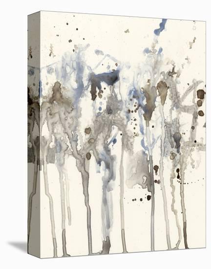 Neutral Splash I-Jennifer Goldberger-Stretched Canvas Print