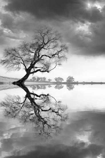 New Beginning Reflect-Moises Levy-Photographic Print