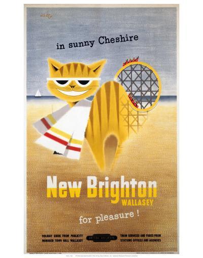 New Brighton Cat--Art Print