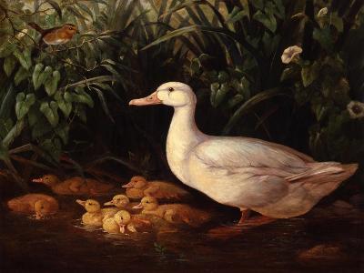 New Brood-Edward Neale-Giclee Print