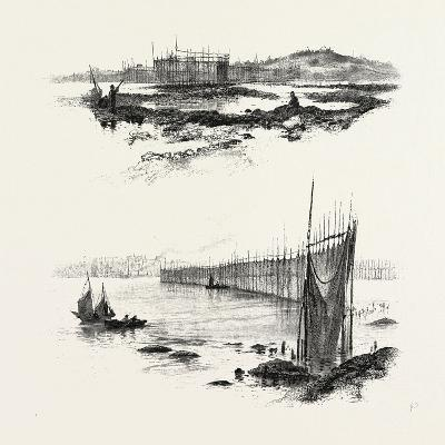 New Brunswick, Salmon Weirs, St. John Harbour, Canada, Nineteenth Century--Giclee Print