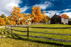 New England farm with Autumn Sugar Maples