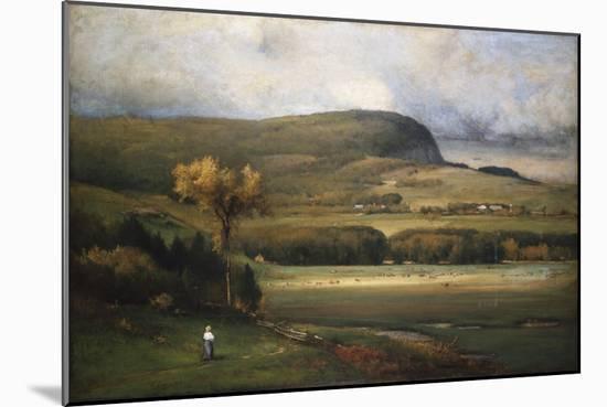 New England Valley, 1878-John James Audubon-Mounted Giclee Print