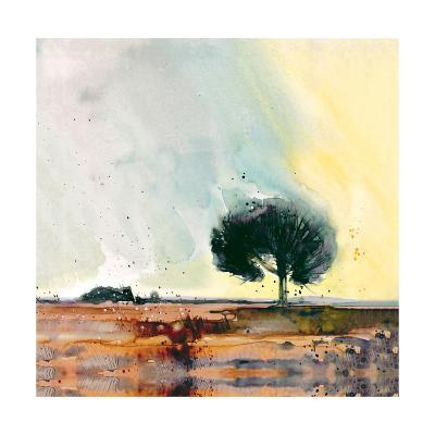 New Forest Study-Simon Howden-Giclee Print
