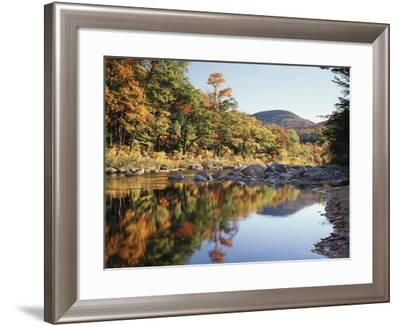 New Hampshire, White Mts Nf, Sugar Maple Reflect in the Swift River-Christopher Talbot Frank-Framed Photographic Print