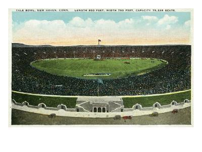New Haven, Connecticut - Panoramic View of Yale Bowl-Lantern Press-Art Print