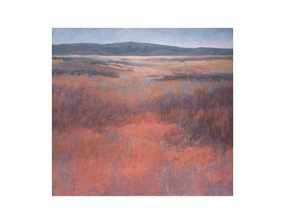 New Mexico Red-Jeannie Sellmer-Art Print