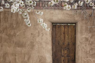 New Mexico, Santa Fe. Weathered Door to Home-Jaynes Gallery-Photographic Print