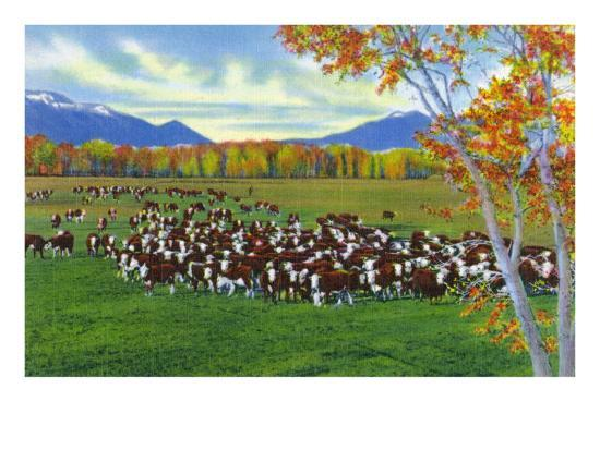 New Mexico, View of Cattle on the Range-Lantern Press-Art Print