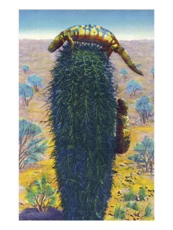 https://imgc.artprintimages.com/img/print/new-mexico-view-of-gila-monsters-on-cactus_u-l-q1goytf0.jpg?p=0