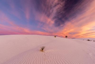 New Mexico, White Sands National Monument. Sunrise on Desert Sand-Jaynes Gallery-Photographic Print