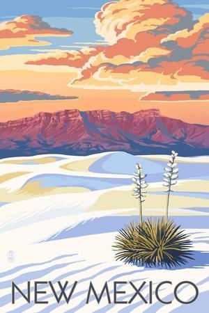 https://imgc.artprintimages.com/img/print/new-mexico-white-sands-sunset_u-l-q1gq70o0.jpg?p=0
