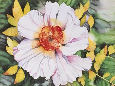 New Poppy-Mary Russel-Giclee Print