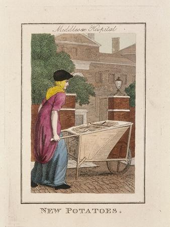 https://imgc.artprintimages.com/img/print/new-potatoes-cries-of-london-1804_u-l-ptn8210.jpg?p=0