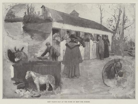 New Year's Day at the Home of Rest for Horses-Henry Charles Seppings Wright-Giclee Print