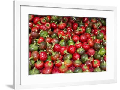 New York City, Ny, USA. Farmers Market-Julien McRoberts-Framed Photographic Print
