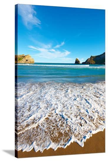 New Zealand Coast Wellington--Stretched Canvas Print
