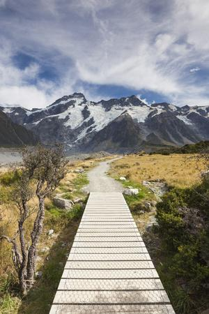 New Zealand, South Island, Canterbury, Trail through Aoraki-Mt. Cook National Park-Walter Bibikow-Photographic Print