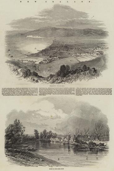 New Zealand--Giclee Print