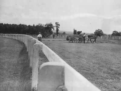 Newbury Race Course--Photographic Print