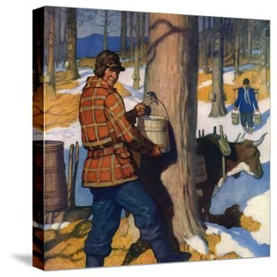 """""""Gathering Maple Syrup,""""March 1, 1927"""