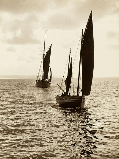 Newlyn Fishing Boats--Photographic Print