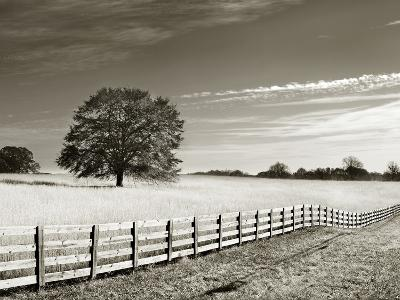 Newnan-John Kuss-Photographic Print