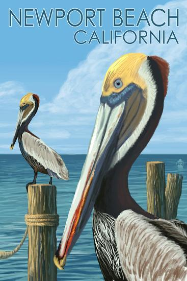 Newport Beach, California - Brown Pelican-Lantern Press-Wall Mural